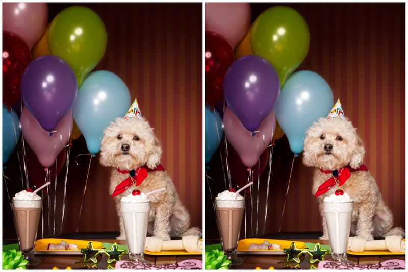 99% of People Can't Spot All 5 Differences - Can You?