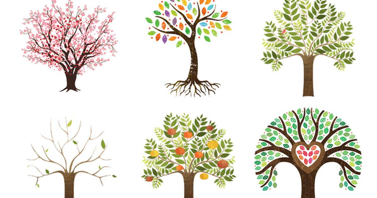 Psychologists Say The Tree Your Eye Is Drawn To Reveals Your Dominant Personality Trait