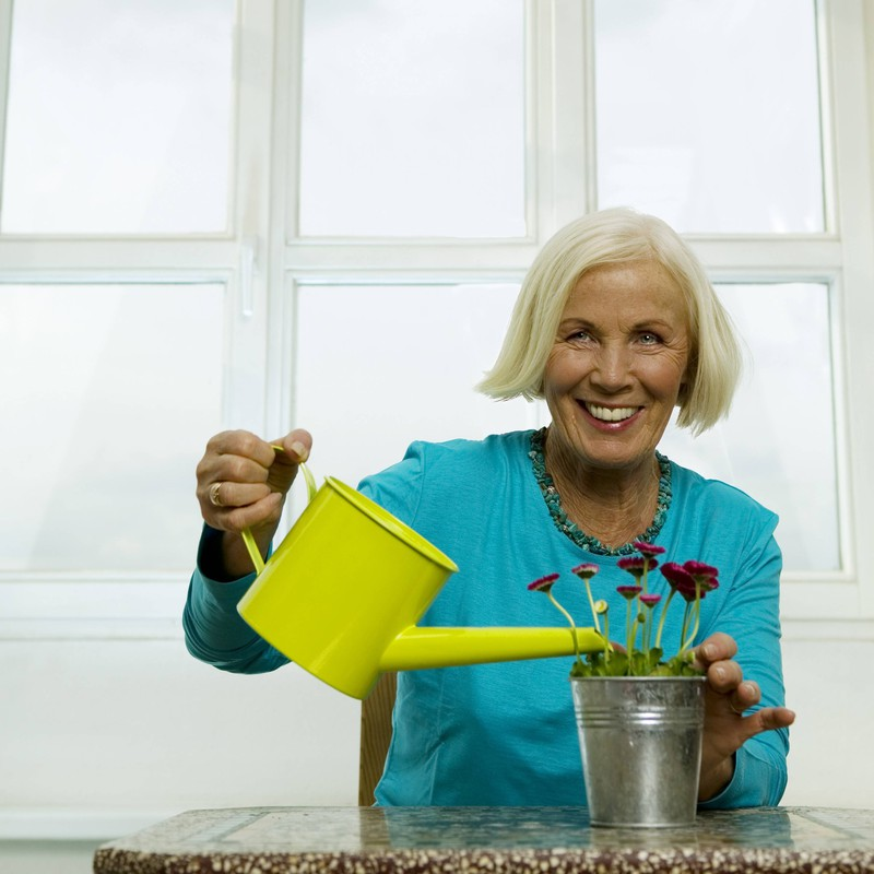 The late wife is probably very amused about her husband watering the plastic plants.