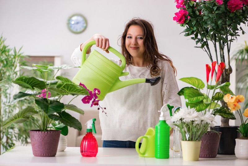 A silly woman watering her plastic plants.