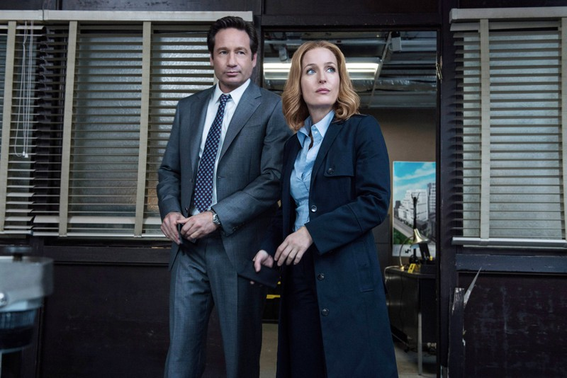 Gillian Anderson and David Duchovny only like each other when they had to play a couple.