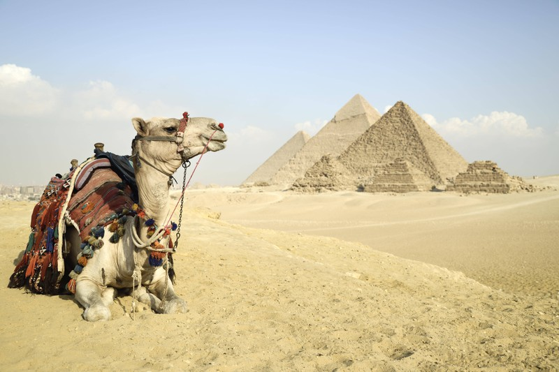 The Giza Pyramid Complex is close to the city.