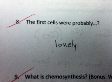 Creativity is not lacking in these test answers.