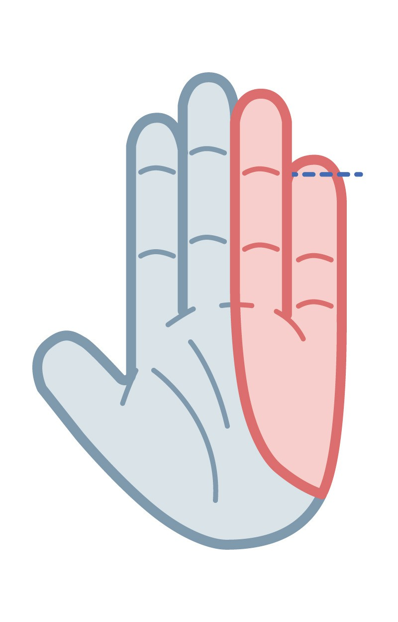 Your pinky extends the crease of your ring finger.