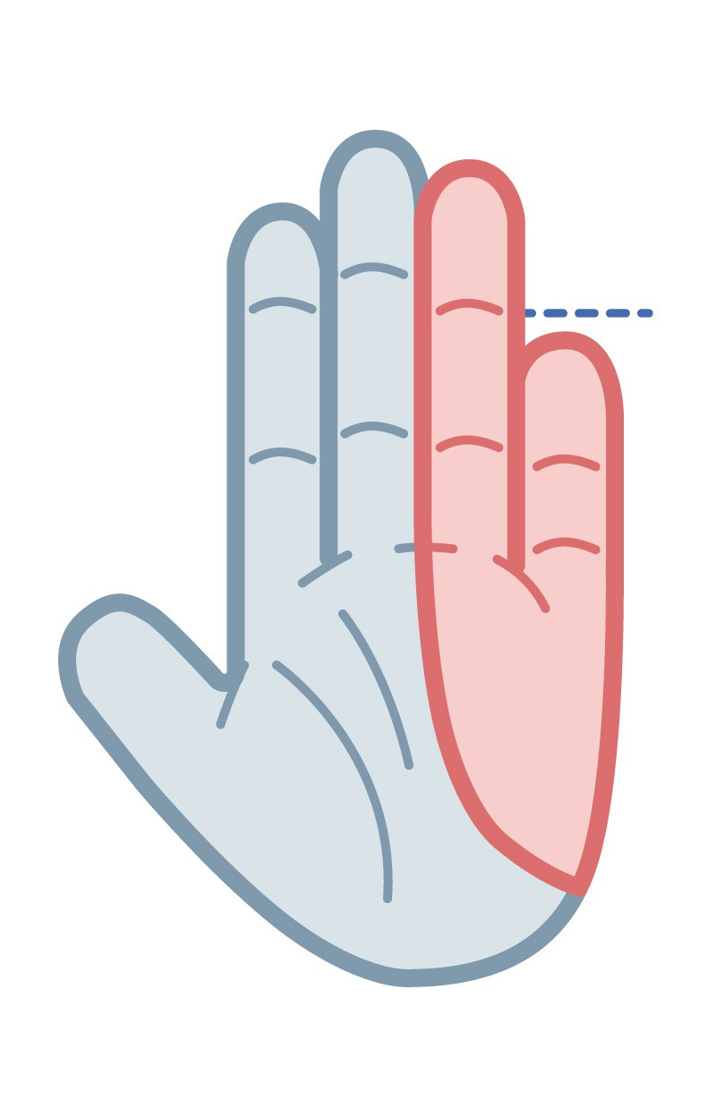 Your pinky is shorter than the crease of your ring finger