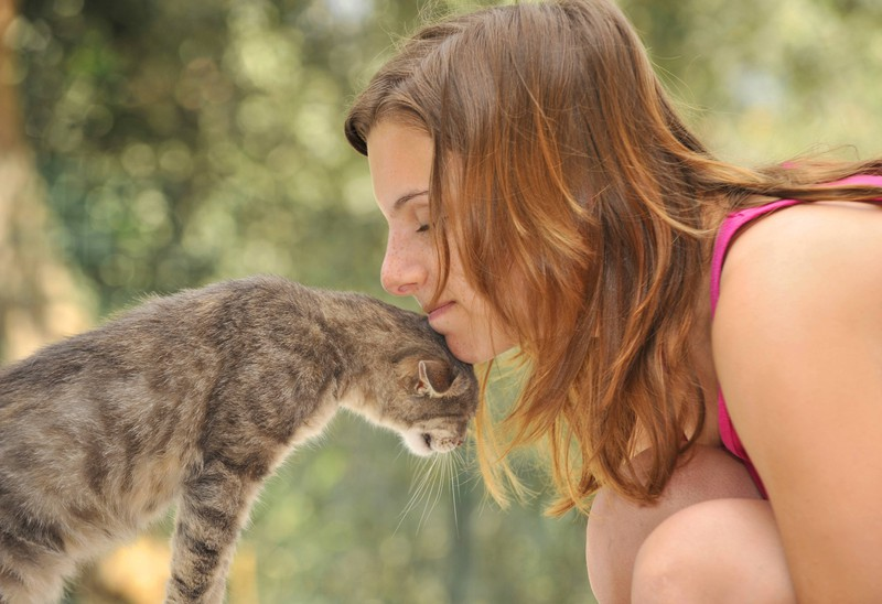 """Cats that rub their heads against humans spread their scent and mark them as """"theirs""""."""